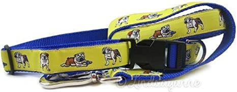 English Bulldog Dog Collar and Leash Set