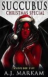 Succubus Christmas Special: A LitRPG Short Story