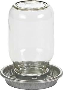 MILLER 957782 Little Giant Mason Jar Baby Chick Waterer Clear, 1 quart
