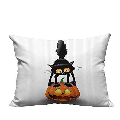 YouXianHome Zippered Pillow Covers Black Cat Pumpkin Head Spooky Carto Characters Halloween Humor Themed Decorative Couch(Double-Sided Printing) 19.5x60 inch ()