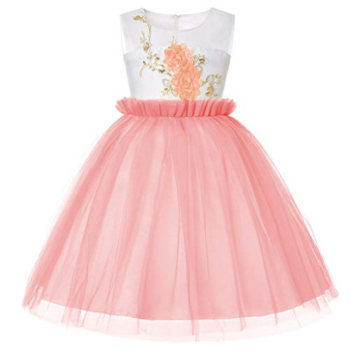 fant Baby Sleeveless Bow Lace Tulle Dress Gown Adorable Girls Flowers Decor Tutu Dress ()