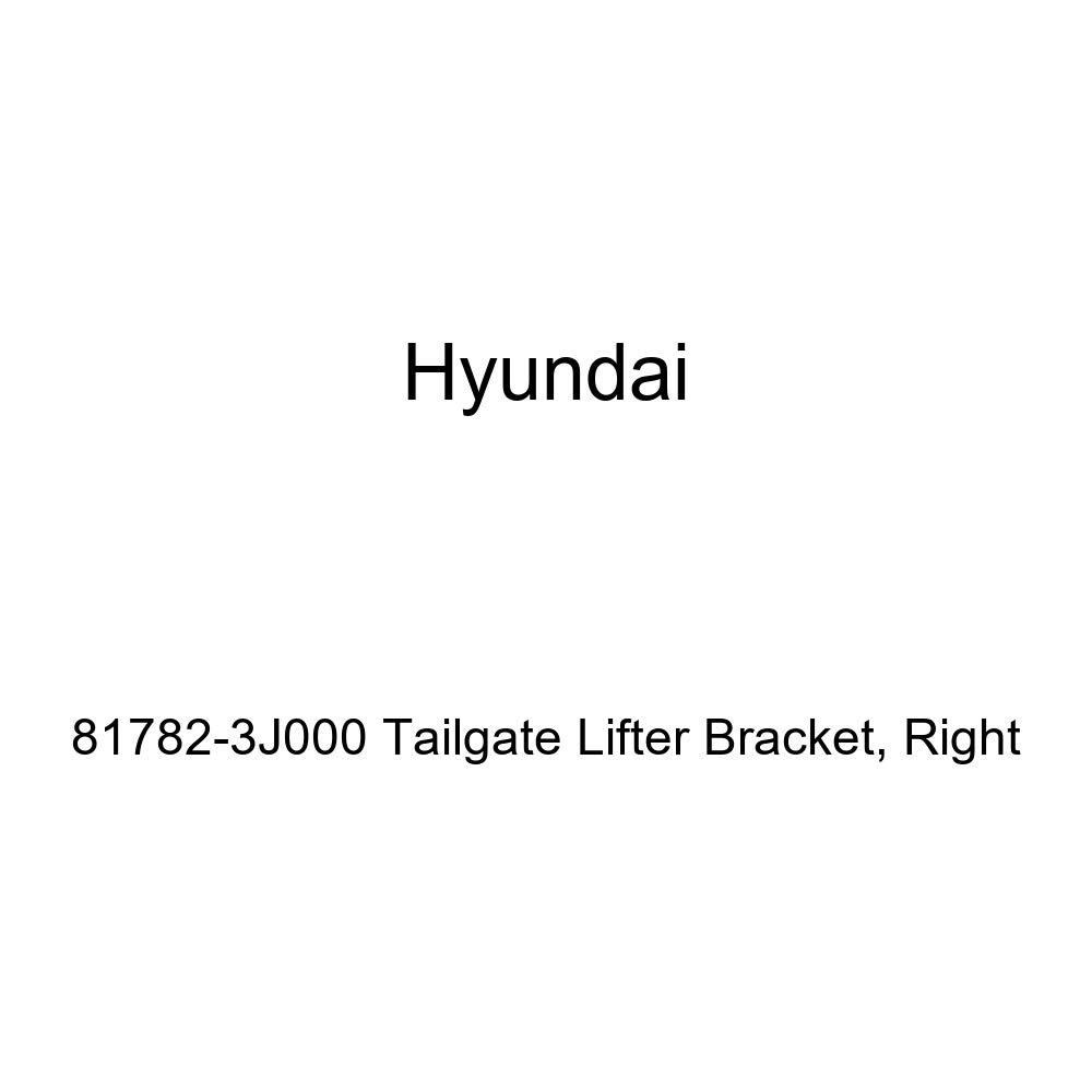 Right Genuine Hyundai 81782-3J000 Tailgate Lifter Bracket