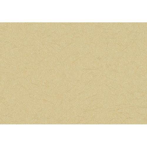 サンゲツ 壁紙50m 和 無地 ベージュ 和 RE-2685 B06XK9FP21 50m|ベージュ2