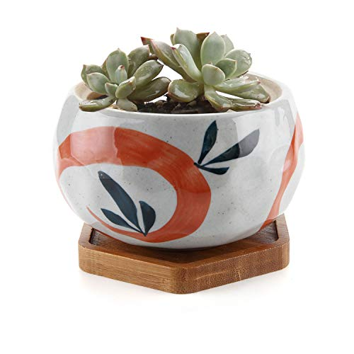 red plant pot - 7
