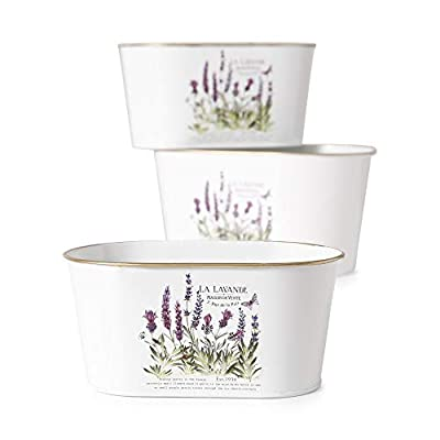 Lavender de Provence, Set of 3, French Country Style Planters, Rustic White with Purple and Green Botanical Details, White Painted Zinc with Gold Finished Rolled Rims, 10 1/4, 9 and 7 3/4 Inches
