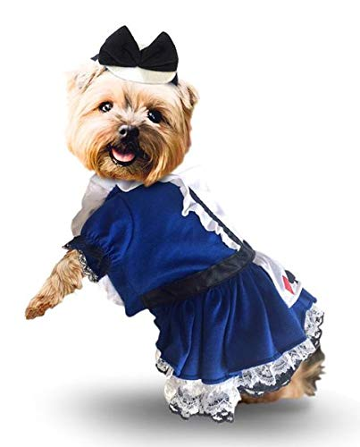 Puppe Love Alice in Wonderland Dress Costume with Charm and Bow Headpiece - for Dogs - Sizes XS Thru L (M- Chest 16-18.5