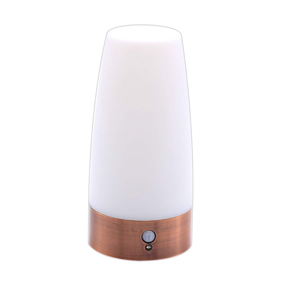 Choppywave led night light wireless battery powered desktop lamp with motion sensor bedside for living room home decro warm light amazon ca home