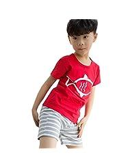 Theplus Boys Summer Short Sleeve T-Shirt and Striped Short Sets