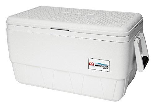 Igloo Marine Ultra Cooler (White, 36-Quart) (Quart Cooler Marine 36)