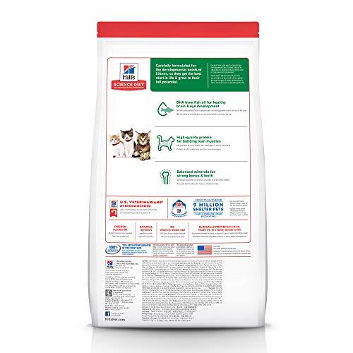 Hill's Science Diet Dry Cat Food, Kitten, Chicken Recipe 3