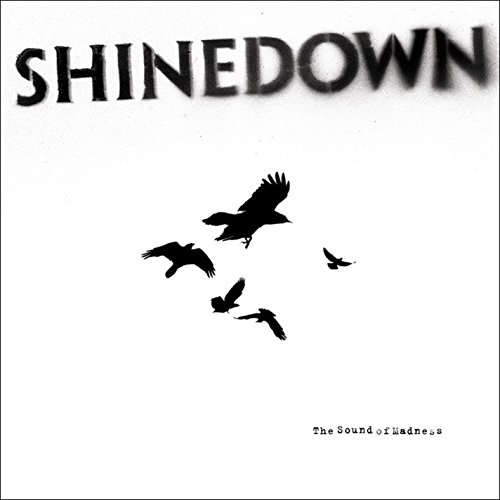 Top recommendation for shinedown sound of madness cd
