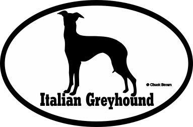 Italian Greyhound Bumper Sticker Euro