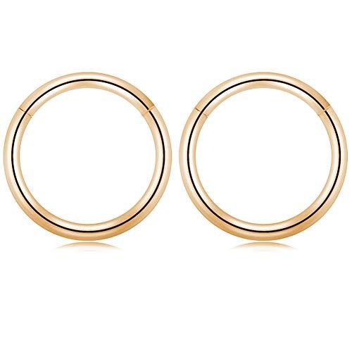 GAGABODY 16G Clicker Segment Seamless Hoop Nose Ring 12mm 1/2Inch Septum Ring Unisex Hoop Earrings Easy Use Body Piercing -