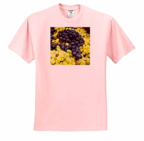 Danita Delimont - Italy - Harvested Fresh Grapes from the Tuscan Fields - T-Shirts - Adult Light-Pink-T-Shirt Large (Tuscan Six Light)