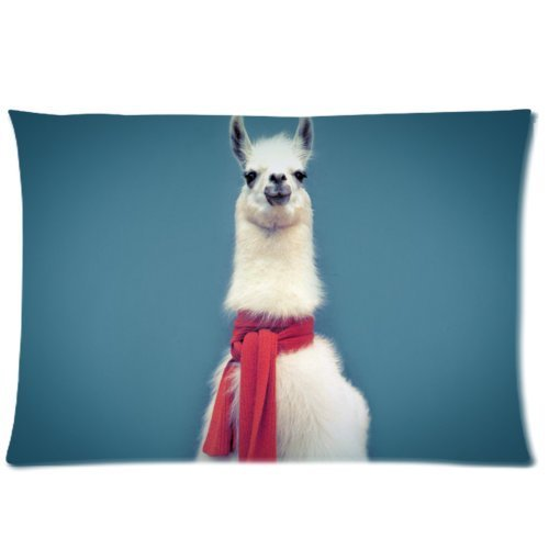Custom Hipster Llama Lama (3) Background Rectangle Pillow Case 16x24 Inch Plush fabrics Zippered Pillow Cover - Lljpcovers Two sides Print - 16' Zippered Throw Pillow