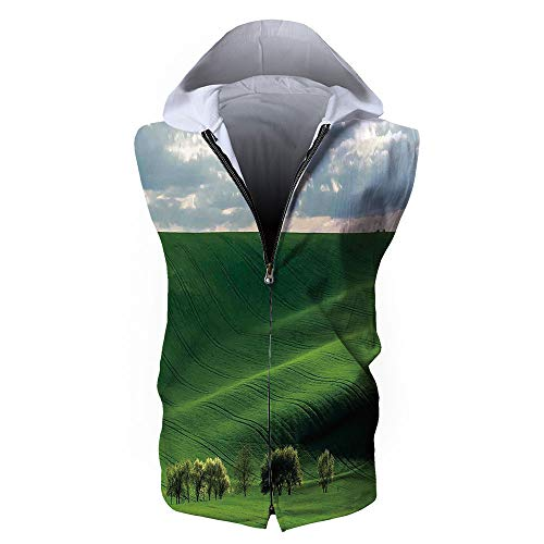 Men's Sweatshirt Vest,Landscape,Hills in The Rays of Evening Sun Agricultural La