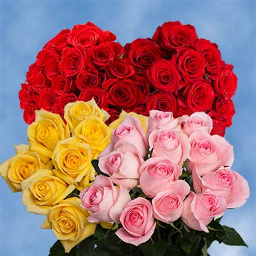 250 Half Red / Half Color Roses Wholesale Perfect for Events by GlobalRose (Image #4)