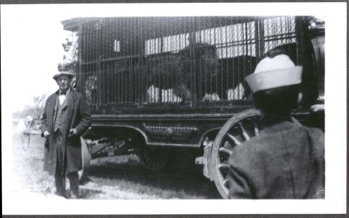 Sparks Circus - Sparks Circus Lion Cage Wagon back yard photo 1928