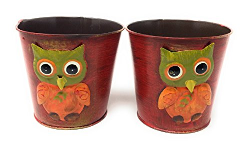 Fall Harvest Mini Metal Planter Pail - 5.5 Inch Diameter, Set of 2 ()