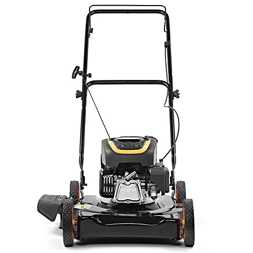 The 8 best lawnmowers gas