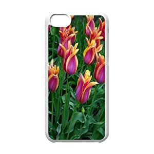 JamesBagg Phone case tulip pattern For Iphone 5c FHYY418712