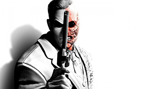 (Twenty-threeBatman Arkham City A Revolver Two-Faced 24X36 Inch Poster Print 1)