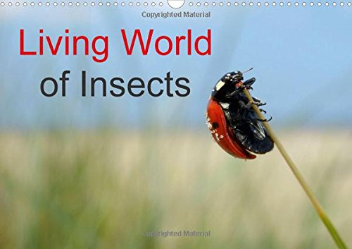 Living World of Insects / UK-Version / Birthday Calendar 2016: Small but mighty (Calvendo Animals)