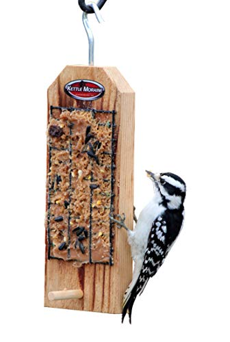 Kettle Moraine Peanut Butter Bird Feeder with Perch Review