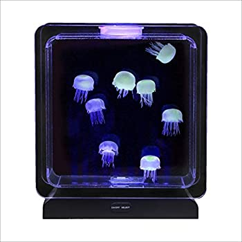 Amazon Com Yosoo Led Lights Jellyfish Water Ball Tropical Fish