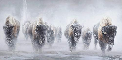 Giants in The Mist - Western Bison Buffalo in Yellowstone Fine Art - Limited Edition Giclee Print (24x48)