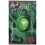 キャベツ 種 【 ミニキャベツ 甘乙女 】 種子 小袋(約1ml)