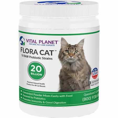 Vital Planet - Flora Cat - High Potency, Multi-Strain Probiotic Formula for Cats - 3.92 oz 30 Servings