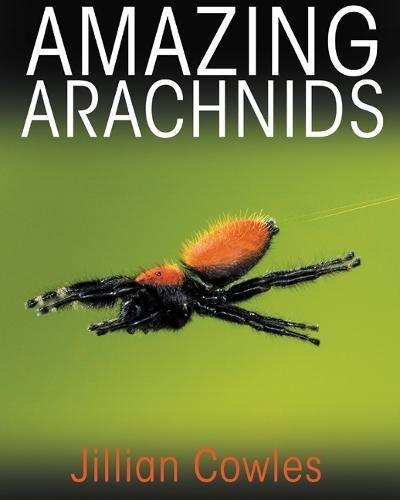 Amazing Arachnids (Insects Amazing)