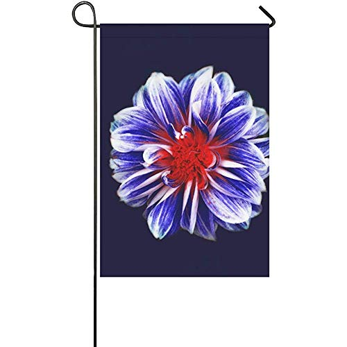 GRATIANUS Home Decorative Outdoor Double Sided Boss Fight Free Stock Images Photos P Polyester Garden Flag Banner 12 x 18 Inch for Outdoor Home Garden Flower Pot -