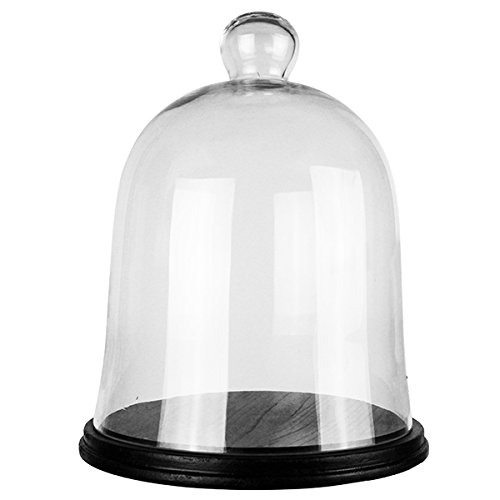 CYS Excel Glass Bell Dome Cloche, Dessert Display, Candy Buffet, Jewelry Showcase, Plant Terrarium Cover, Pack of 1 (With Wood Base)