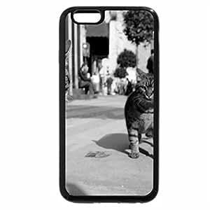 iPhone 6S Plus Case, iPhone 6 Plus Case (Black & White) - Cat in street