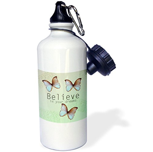 3dRose PS Inspirations - Believe in Your Dreams Butterfly Trio- Inspirational Words - 21 oz Sports Water Bottle (wb_79197_1)