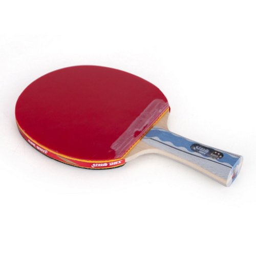 Dhs Six Star Ping Pong Paddle Table Tennis Racket A6002