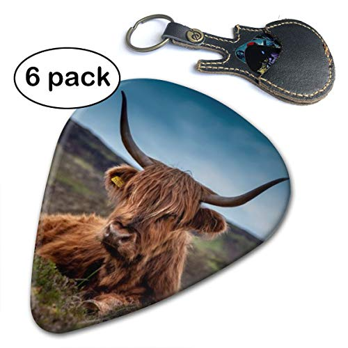 - Beef Scotland Highland Beef Cow Acoustic Electric Bass Guitar Picks 6 Pack Thin Medium Heavy