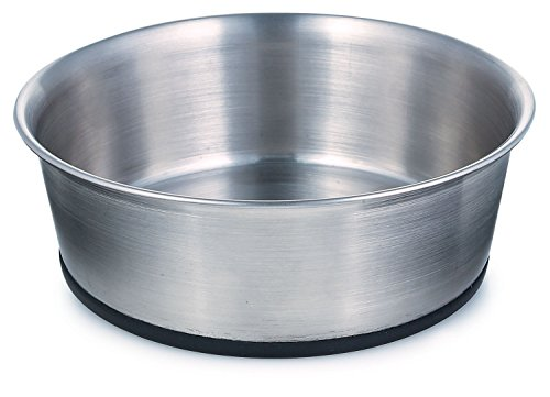 Pro Select Stainless Steel Dog Bowl with Rubber Base, 5-1/4-Inch, 16-Ounce