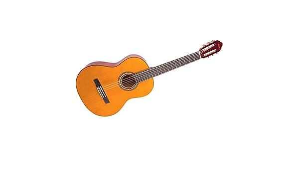 VALENCIA VC254 NATURAL GUITARRA CLÁSICA: Amazon.es: Instrumentos ...