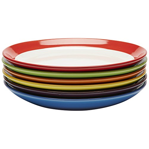 Premium Ceramic Set of 6, Colorful Meal Stoneware (Dinner Plates) -
