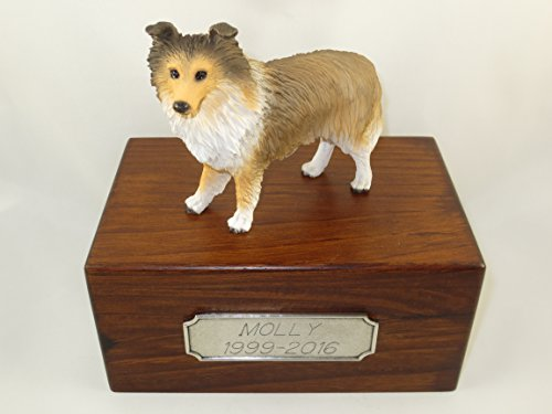 Beautiful Paulownia Small Wooden Urn with Sable Sheltie Figurine & Personalized Pewter (Sheltie Porcelain)