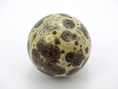 Ball Leopard Skins (jennysun2010 2 pcs Natural Leopard Skin Jasper Gemstone Collectibles Round Ball Crystal Healing Sphere Finger Health Massage Rock Stones 30mm With Wood Stand)