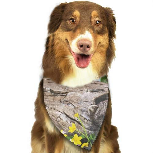 Cecil Beard Ferrets Tree Hole Flowers Pack Dog Bandana Washable Triangle Cat Scarf Hawaiian Style