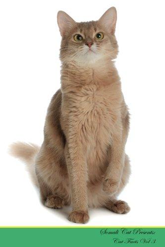 Somali Cat Presents:  Cat Facts Workbook. Somali Cat Presents Cat Facts Workbook with Self Therapy, Journalling, Productivity Tracker with Self ... Productivity Tracker Workbook. Volume 3