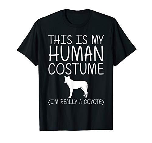 Diy Wolf Halloween Costume (Coyote Easy Halloween Human Costume Wolf Pup Canine DIY Gift)