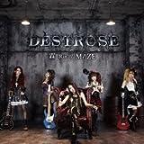 RIN/MAZE by DESTROSE (2013-11-13)