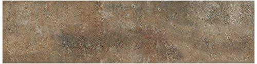 Dal-Tile 281P-BW01 - Baldosa de ladrillo, ladrillo, 2' x 8', Patio