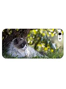 3d Full Wrap Case for iPhone 5/5s Animal Cute Kitten In The Grass